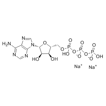 Suministro Sal disódica de 5'-trifosfato de adenosina CAS:987-65-5