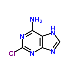 Suministro 2-clorooadenina CAS:1839-18-5