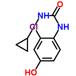 Suministro 1- (2-cloro-4-hidroxifenil) -3-ciclopropilurea CAS:796848-79-8