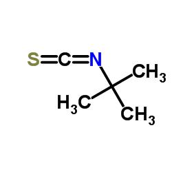 Suministro isotiocianato de terc-butilo CAS:590-42-1